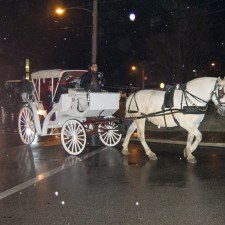 Families cuddled up for carriage rides along South Wayne Avenue