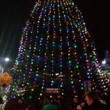 Magnificently, the tree lights appeared in the town of Wayne!