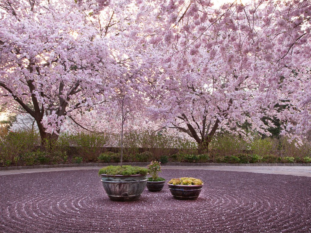 Chanticleer Garden in Wayne (Photo Credit: Lisa Roper)