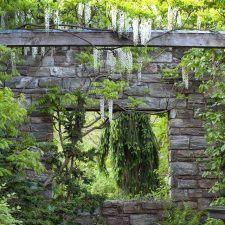 Chanticleer Garden in Wayne, PA